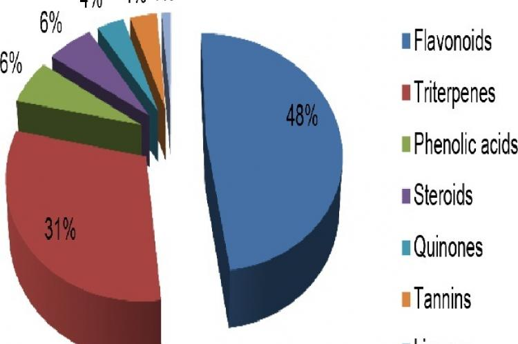Distribution of 79 isolated compounds of Miconia by classes