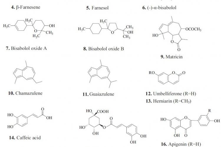 Secondary metabolites from M. chamomilla