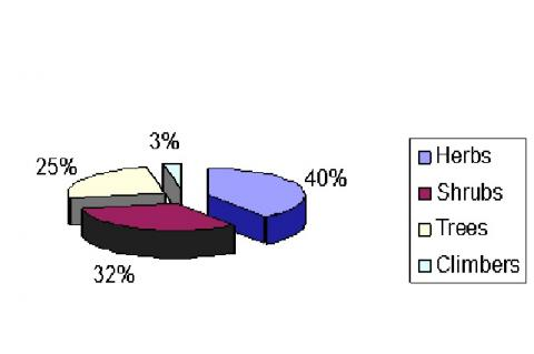 Percent distribution of plants of folk use