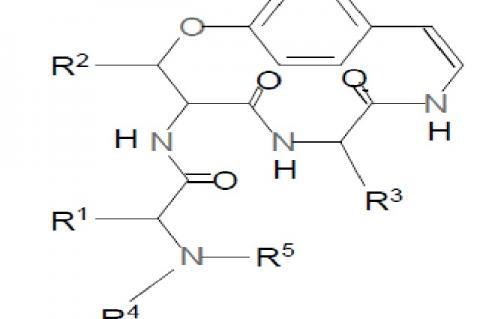 General Cyclopeptide alkaloid