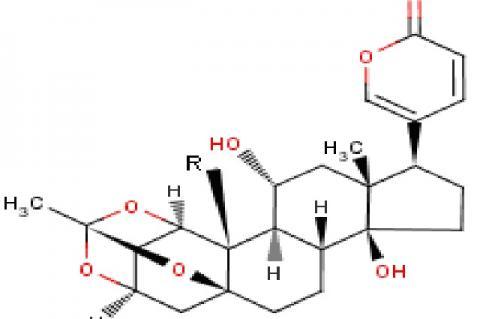 Bryophyllin A R=CHO