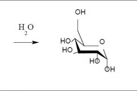 Conversion of oligosaccharide to glucose