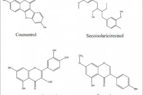 Chemical structures of some phytoestrogens