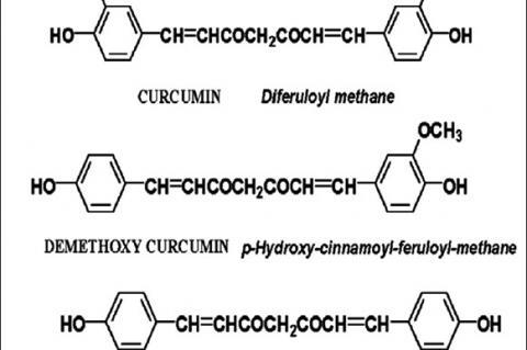 Chemical structure of curcuminoids curcumin,