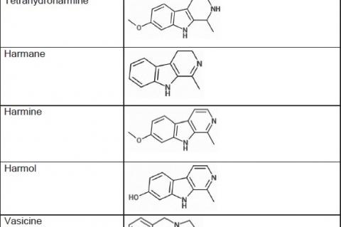 Molecular structure of major alkaloids of peganum harmala