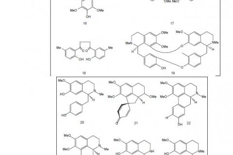The structures of some phytochemical compounds isolated from various species of Berberis